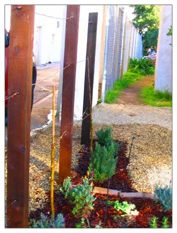 4 x 4 redwood posts with copper wire