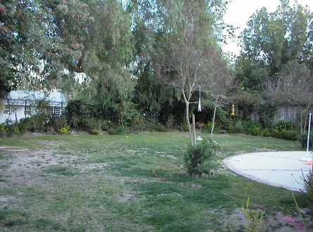 Shirley Bovshows Backyard Before Makeover