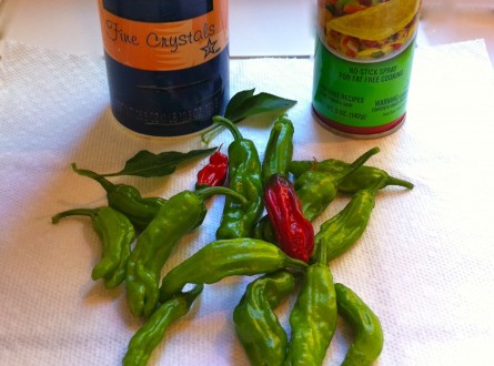 Fresh picked shishito peppers, spray oil and sea salt