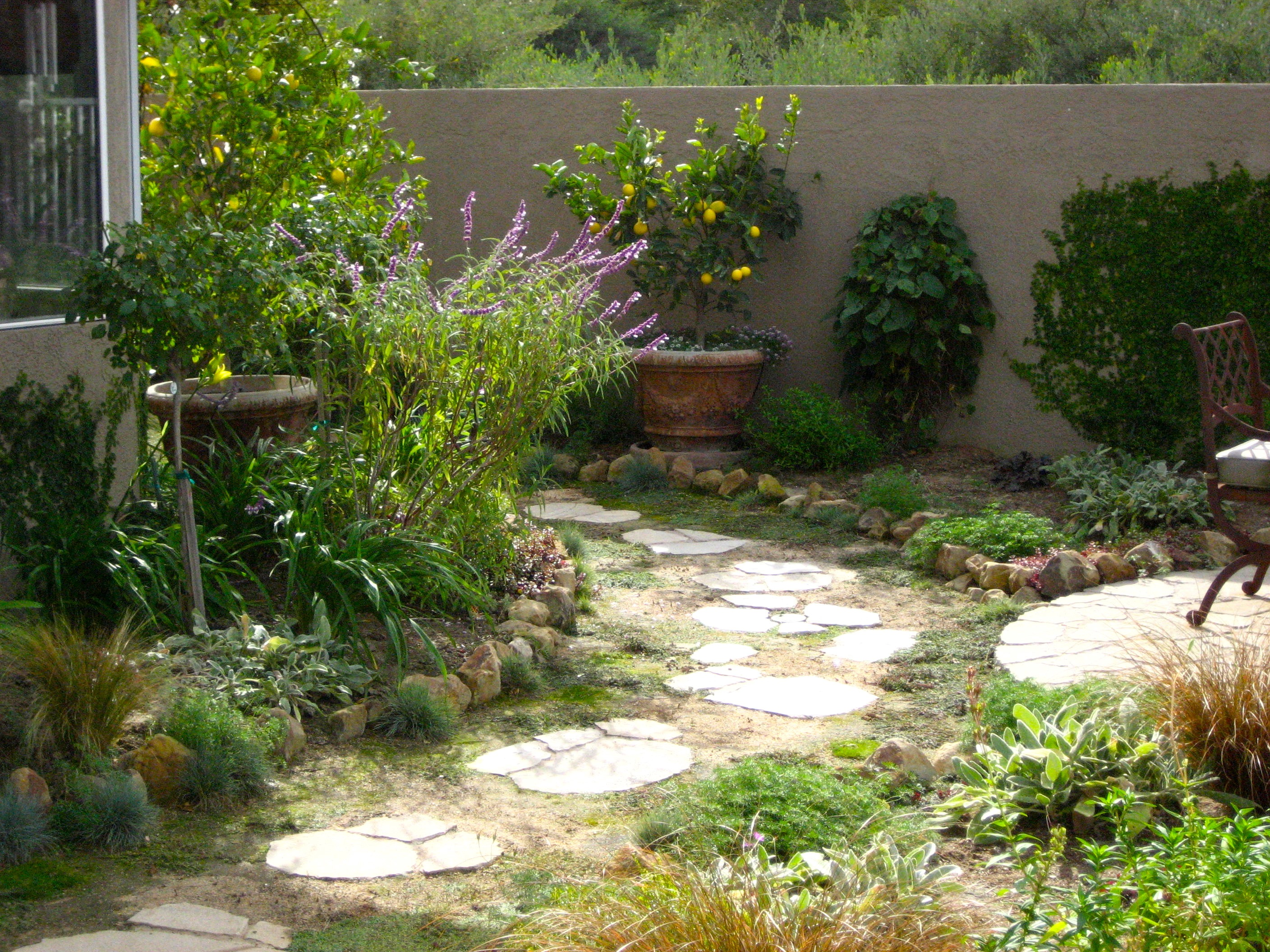 Narrow Backyard Trees : Pathway to narrow side yard makeover by Shirley Bovshow  Eden Makers
