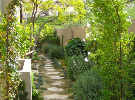 Narrow side yard makeover by Shirley Bovshow
