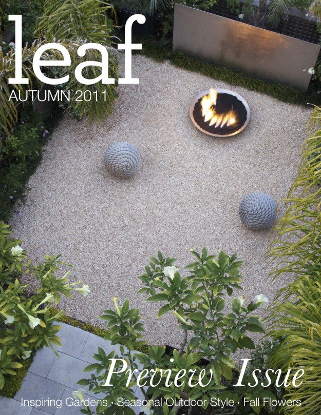 Leaf Magazine Exterior Design Preview Magazine Cover
