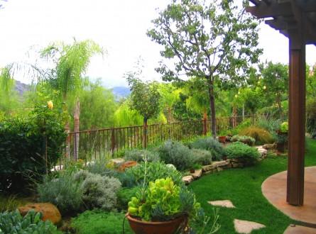 Shirley Bovshow Garden Design mediterranean style garden