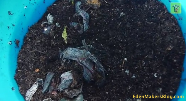 Worm Castings Compost Soil on EdenMakers Blog