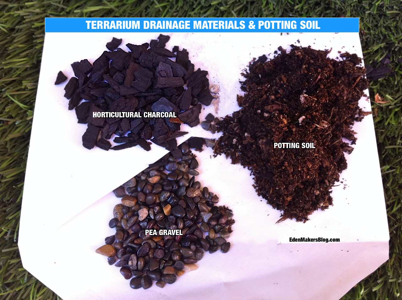 Drainage materials for terrarium include horticultural charcoal and pea gravel. Add potting spoil on top of drainage layer