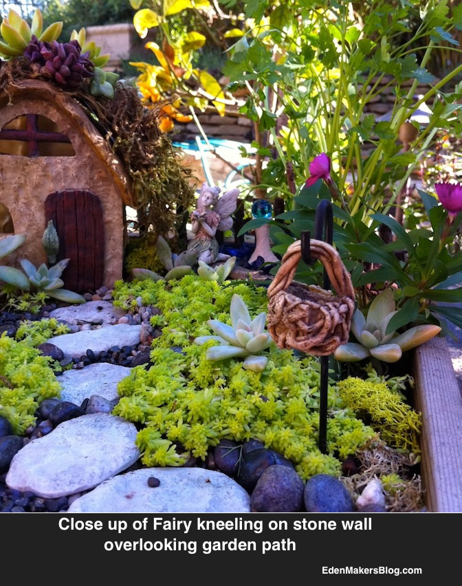 Fairy-kneeling-in-fairy-garden overlooking sedum lawn, stone path and succulent roof house. Shirley Bovshow