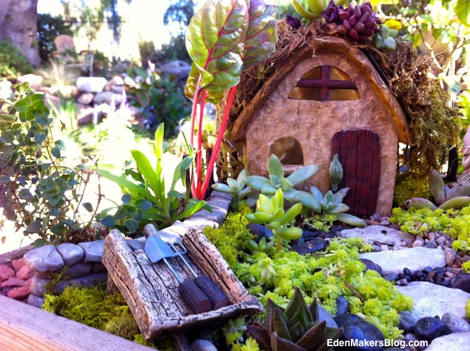 Miniature garden tools and wheel barrel adorn a succulent-fairy-garden by shirley bovshow