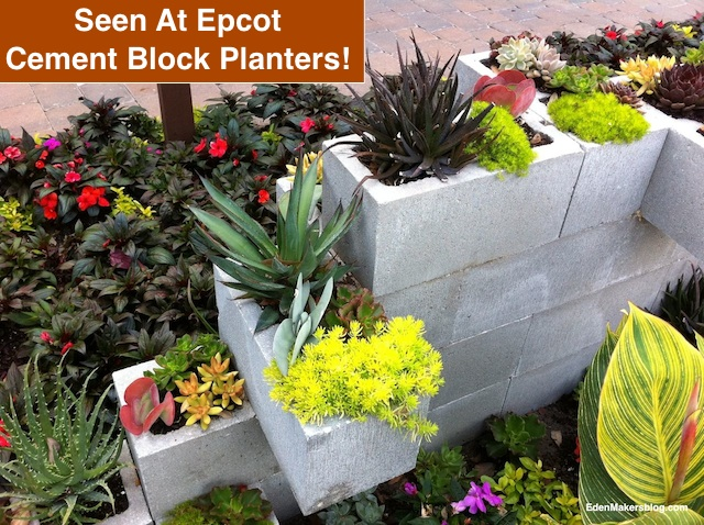 stacked cement block succulent planter seen at Epcot