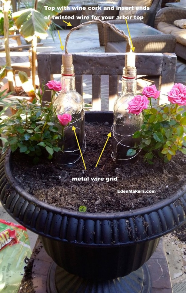 pink-mini-roses-planted-container-glass-arbor-edenmakers