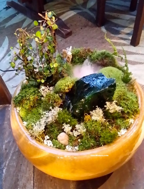 emerald-isle-garden-ceramic-pot-edenmakers