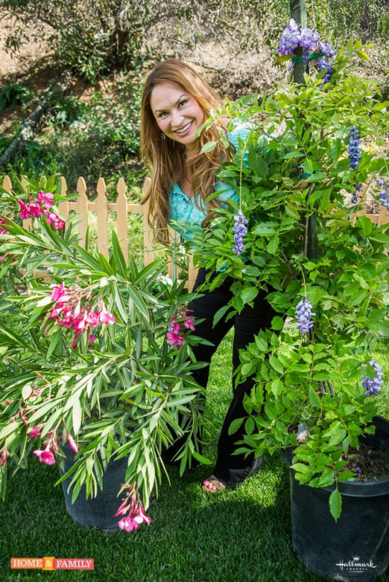 garden-expert-shirley-bovshow-talks-poisonous-plants-on-home-and-family-show-hallmark-channel