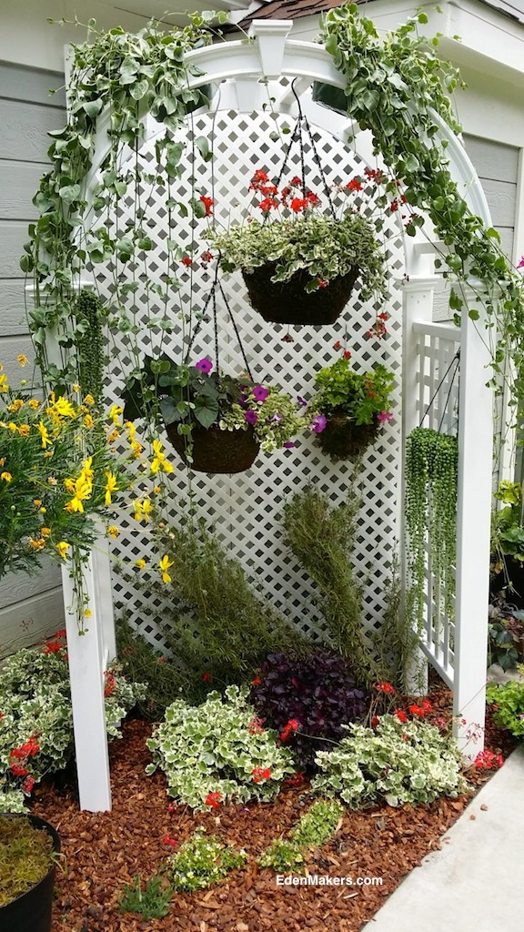 white-arbor-trellis-background-hanging-plants-baskets-narrow-garden-bed-edenmakers-shirley-bovshow