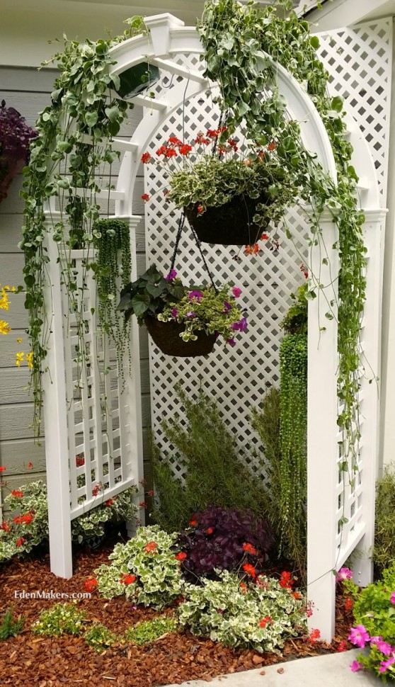 white-arbor-with-hanging-flower-baskets-succulents-geraniums-edenmakers-shirley-bovshow