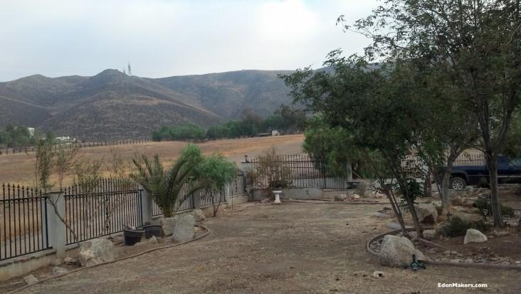 High-desert-garden-low-water-plants-boulders-dry-river-bed-edenmakers
