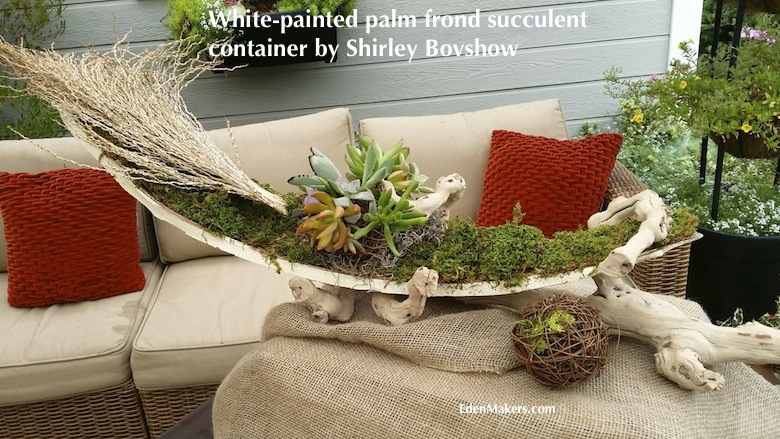 white-painted-palm-frond-on-drift-wood-planted-succulent-arrangement-shirley-bovshow-designer-edenmakers-blog