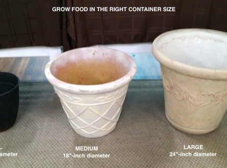 small-medium-large-plant-containers-pots-edenmakers-blog