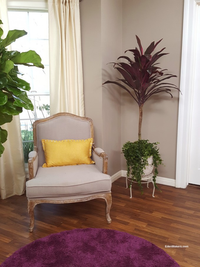 pink-indoor-cordyline-bedroom-plant-gray-walls-edenmaker-blog
