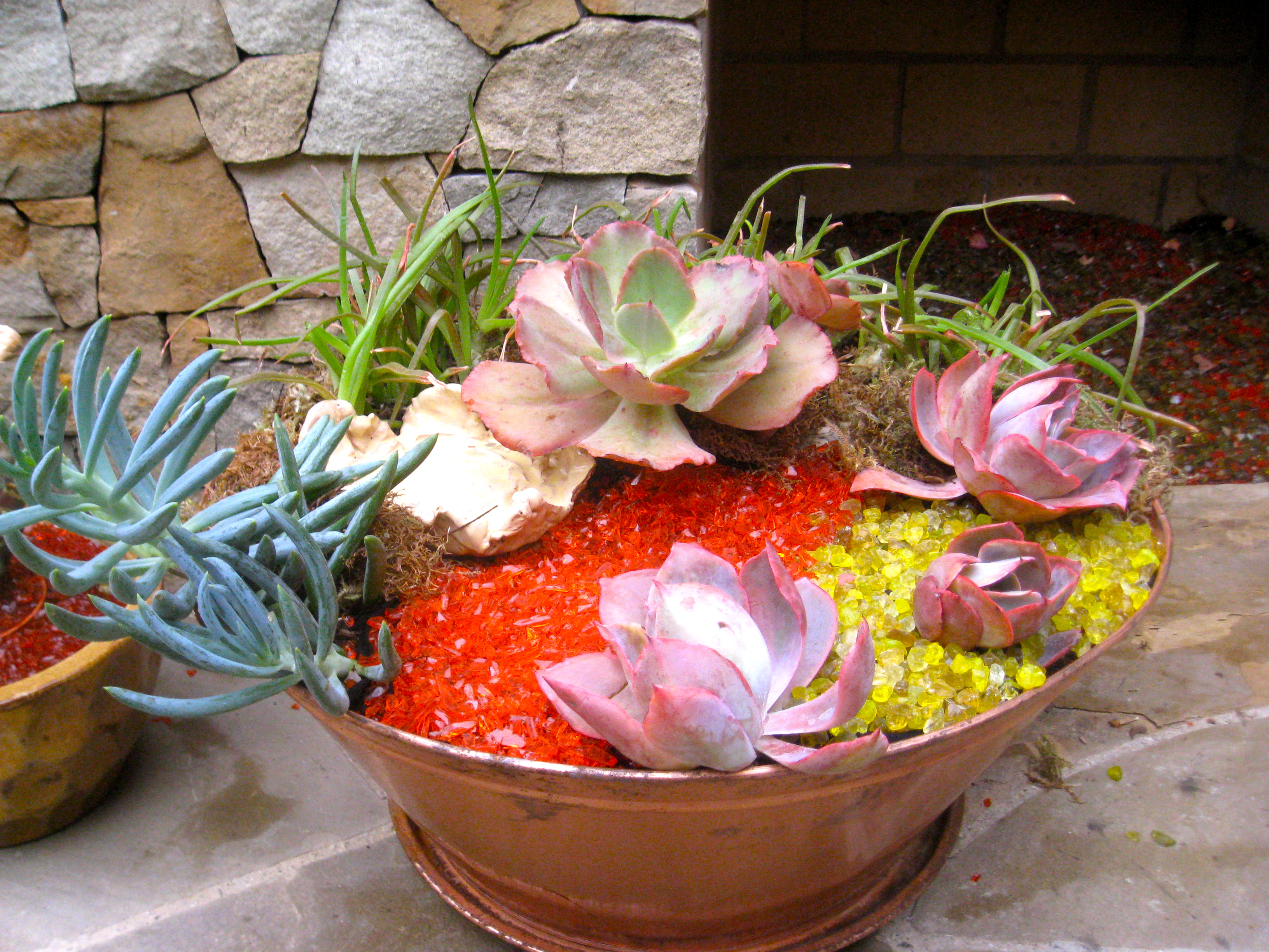 Succulent container garden ideas photograph succulent cont - How to make a succulent container garden ...