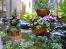 copper container garden