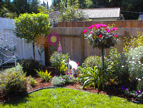 Small english garden design pictures pdf for Small rose garden plans