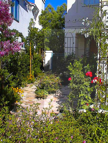 Small yard garden courtyard entry