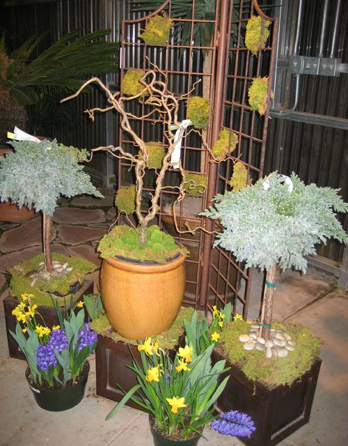 "Create a ""Winter to Spring"" Garden Vignette With Potted Plants ..."